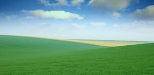 Imu: stangata terreni. Esenti solo sopra 600 metri. Sotto si paga il 16 dicembre