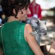 Australia: Agnese Landini, la moglie di Renzi prende in braccio un koala01