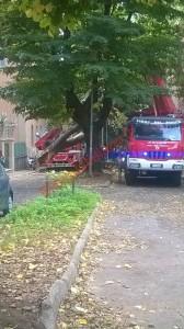 Maltempo a Roma, scuole chiuse giovedì 6 novembre