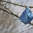 Sacchetti di plastica: dal 2019, 90 a testa. Non uno di più!