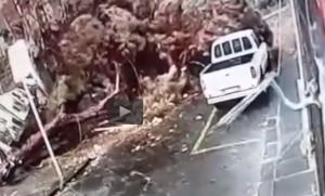 Tromba d'aria a Catania: l'auto parte, un istante dopo crolla un albero
