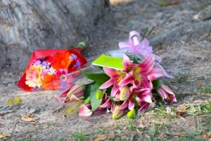 Australia, strage di bimbi a Cairns: arrestata la madre, anche lei ferita