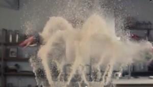 Gamberetti fritti al volo in soli 3 secondi: il video in time lapse
