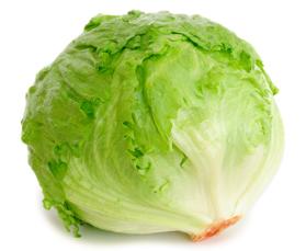 Iceberg, invasione dell'insalata spagnola: italiani la preferiscono alla lattuga