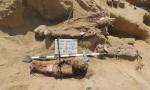 Egitto, necropoli con un milione di mummie scoperta a Faiyum FOTO