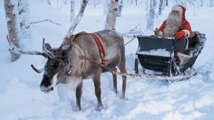 Le renne stanno finendo: Babbo Natale è avvisato