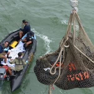 Aereo malese AirAsia: trovati due grandi pezzi dell'aereo (foto Ansa)