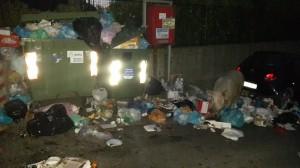Genova, maiale tra la spazzatura: i cassonetti traboccano FOTO