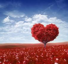 Uomo, donna, amore: il quinto partner è quello giusto