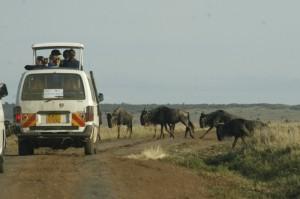 Paolo Lepri morto in Kenya: incidente stradale