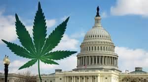 La marijuana a Washington