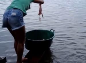 VIDEO YouTube: Brasile, pesca piranha immergendo in acqua un tocco di carne