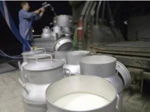 Quote latte, arriva altra maxi multa. Ministro Martina attacca Salvini