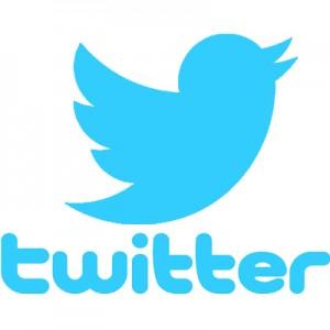 """Twitter non riesce a tutelare utenti da insulti: """"E' vero, facciamo schifo"""""""