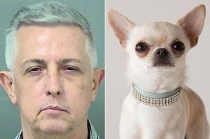 Sesso in casa col chihuahua, Manuel Ramon Gonzalez arrestato