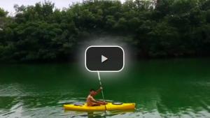 "VIDEO YouTube. Novak Djokovic canta: ""Coccodrillo, dove sei?"""