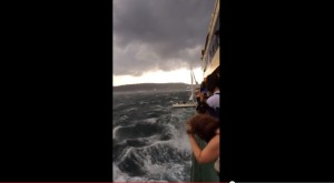 porto Sydney, barca a vela si scontra con traghetto