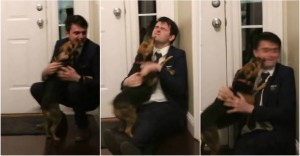 YouTube: Torna a casa dopo 2 anni, il cane impazzisce dalla gioia