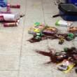 Colombia, terremoto magnitudo 6.6. Palazzi tremano a Bogotà e Medellin