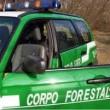 Forestale accorpata alla Polizia: primo sì al Senato
