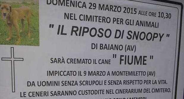 """Manifesti funebri e cerimonia per ricordare """"Fiume"""", cane impiccato in Irpinia FOTO"""