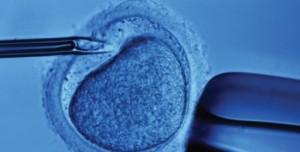 Cina, embrioni umani geneticamente modificati. Science e Nature rifiutano studio