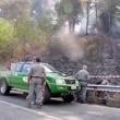 Accorpamento Corpo forestale, sfida Polizia e Carabinieri