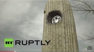 VIDEO YouTube. Autovelox nei cactus in Arizona: così polizia controlla cittadini