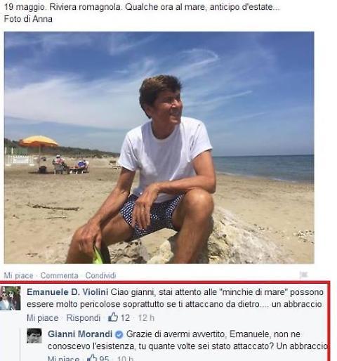 """Gianni Morandi e i commenti sulle """"minchie di mare"""" (foto Facebook)"""