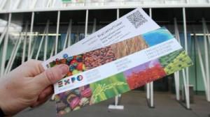 Aleksander Ricco, pugno a donna in fila per rubarle biglietti Expo: arrestato