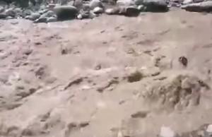 Colombia, frana villaggio Salgar: drammatico salvataggio di un cane