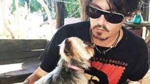 Johnny Depp rischia 10 anni di carcere per i suoi cani