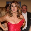 Elisabetta Canalis incinta: VIDEO YouTube con annuncio 7
