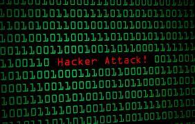 Fabio Meier, Valerio Camici: gli hacker dei ministeri arrestati