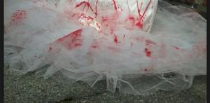 Strage di nozze: padre sposo uccide moglie, nuora, suoceri poi s'ammazza
