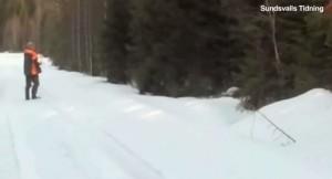 cacciatore mette in fuga orso bruno alzando braccia e urlando