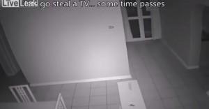 ladri entrano in casa dalla finestra, donna li allontana sparando