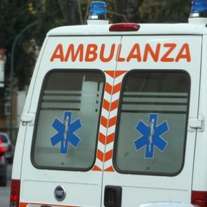Noventa Vicentina, Virgil Rusu cade nel canale tagliando erba: morto annegato