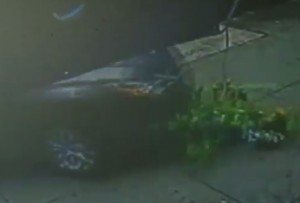 VIDEO YouTube - Bimbo di 3 anni travolto da auto: solo qualche graffio