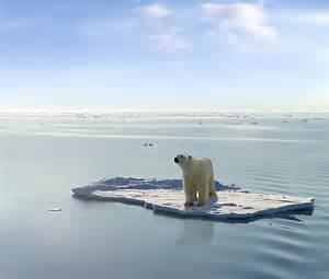 Scioglimento ghiacci polari