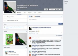 """""""Il pappagallo di Domenico Maurantonio"""""""