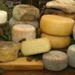 """Italia (tardi) alla guerra del formaggio. Martina: """"Salvi i grandi dop"""", ma per Petrini (Repubblica) non è vero"""