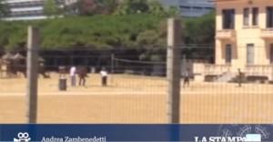 """Jesolo, turisti e migranti sulla stessa spiaggia. """"Rimandateli a casa"""" VIDEO"""