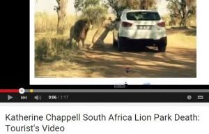 VIDEO YouTube - FOTO Katherine Chappell azzannata a morte da leonessa