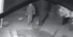 Noventa Padovana, ladro ripreso mentre tenta di entrare in casa: panico in villa