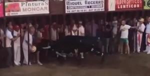 Video Youtube: morto incornato dal toro in Encierro a Coria (Spagna)