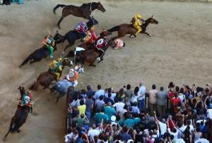 Palio di Siena: cavallo Periclea si spezza zampa durante tratta. Abbattuta