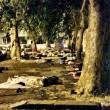 Roma, stazione Tiburtina: profughi dormono in strada tra feci e rifiuti03