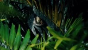 """""""Jurassic World"""": T-Rex transgenici al cinema da oggi 11 giugno"""