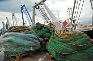 Pesce, scatta il divieto di pesca nell'Adriatico per barche con sistema a traino